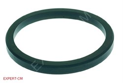 Кольцо уплотнительное группы ELEKTRA/ASTORIA CMA dd67х56мм h6мм - фото 13463